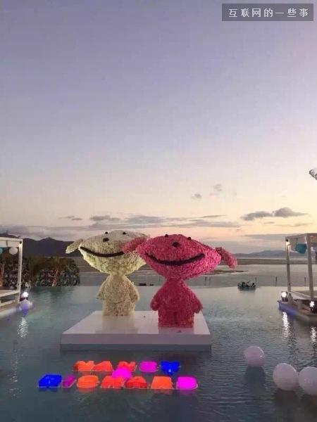今天十一,刘强东和奶茶妹妹正在大堡礁结婚呢!,互联网的一些事