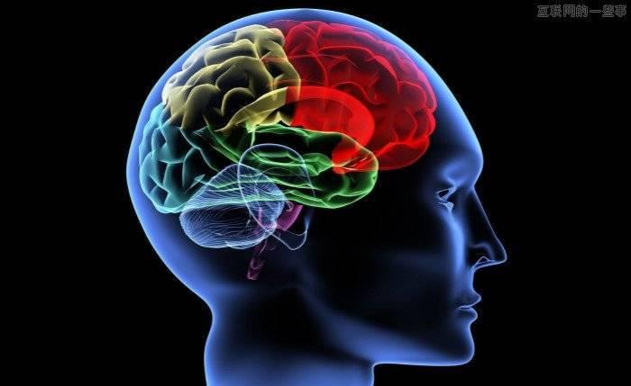 详细解读欧洲人脑计划