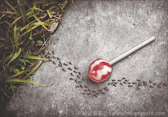 无糖棒棒糖