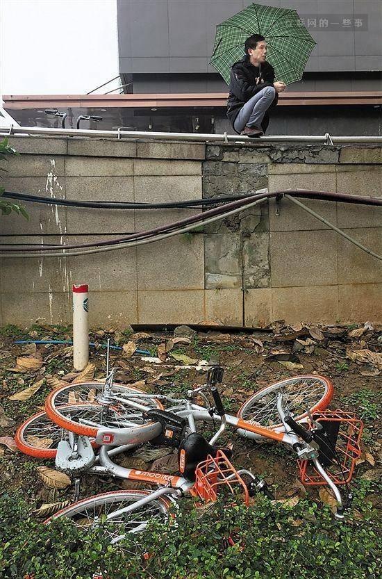 共享单车被偷光了!90%已找不到了......