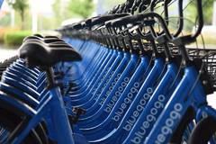 小蓝单车的死亡日记