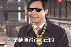 王健林败了,雷军:1000亿只是一个小目标而已!