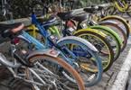 成都共享单车服务开启打分制 低于600分退出市场