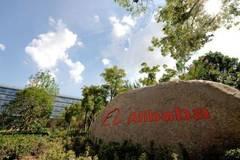阿里巴巴公布2019财年增长指引高达60%