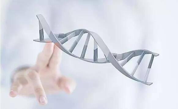 消费级基因检测的多面:娱乐化、数据生意和雷区