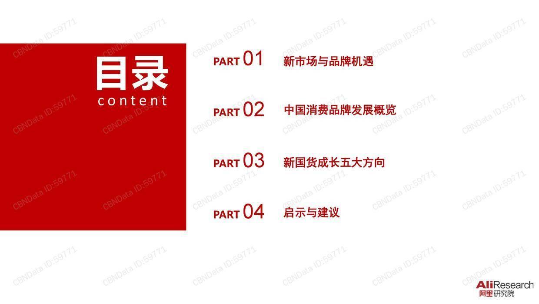 CBNData:2019中国消费品牌发展报告