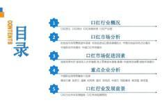 中商文庫:2019年中國口紅行業市場前景及投資研究報告