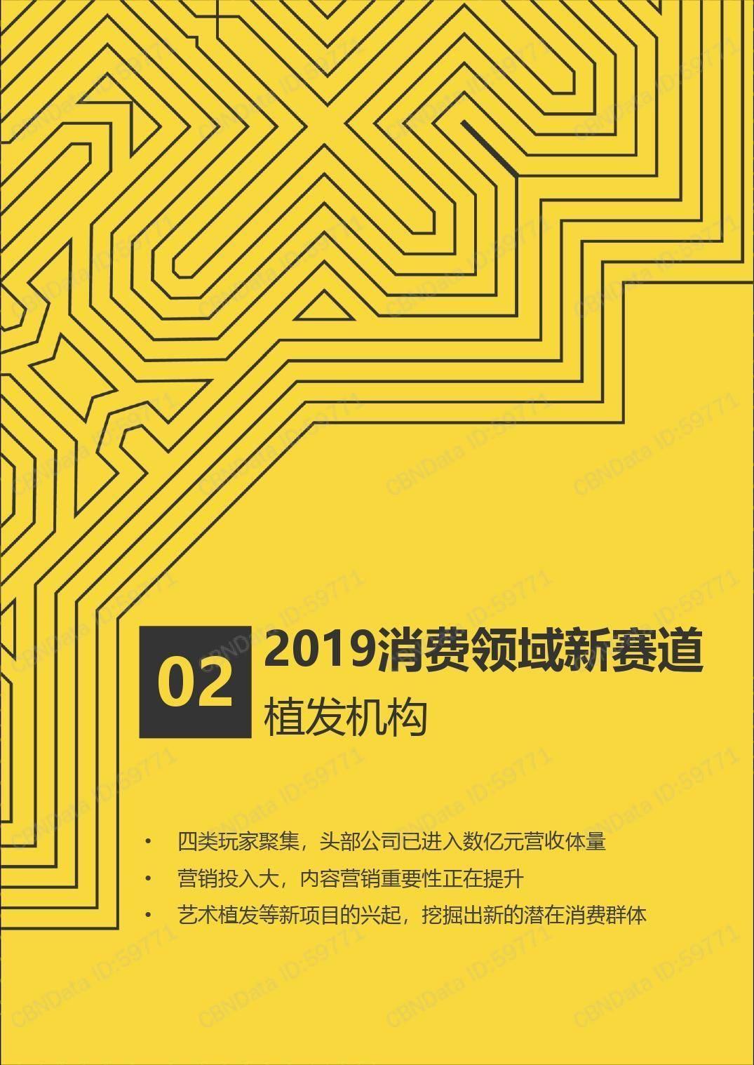 CBNData:2019消费领域10大新赛道