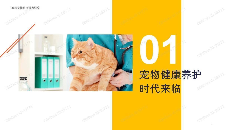 CBNData:2020宠物医疗消费洞察报告