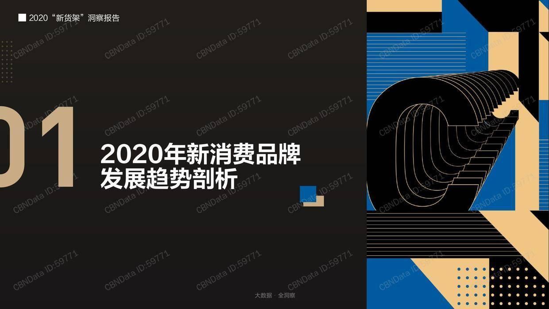 "CBNData:2020""新货架""洞察报告"
