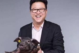 丁磊大叔关于猪和春风的事儿