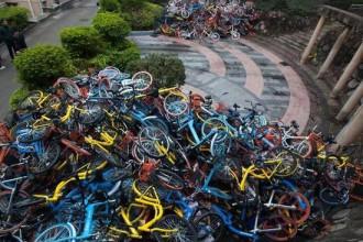共享单车地下江湖:投资50万月入600万,机会OR骗局