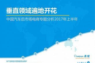 2017年上半年中国汽车后市场电商专题分析